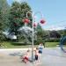 Apple Tree Spinner